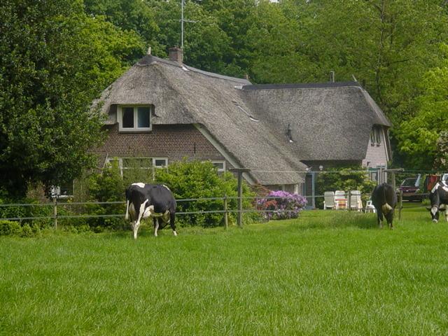 Vakantiehuis de Pouwel